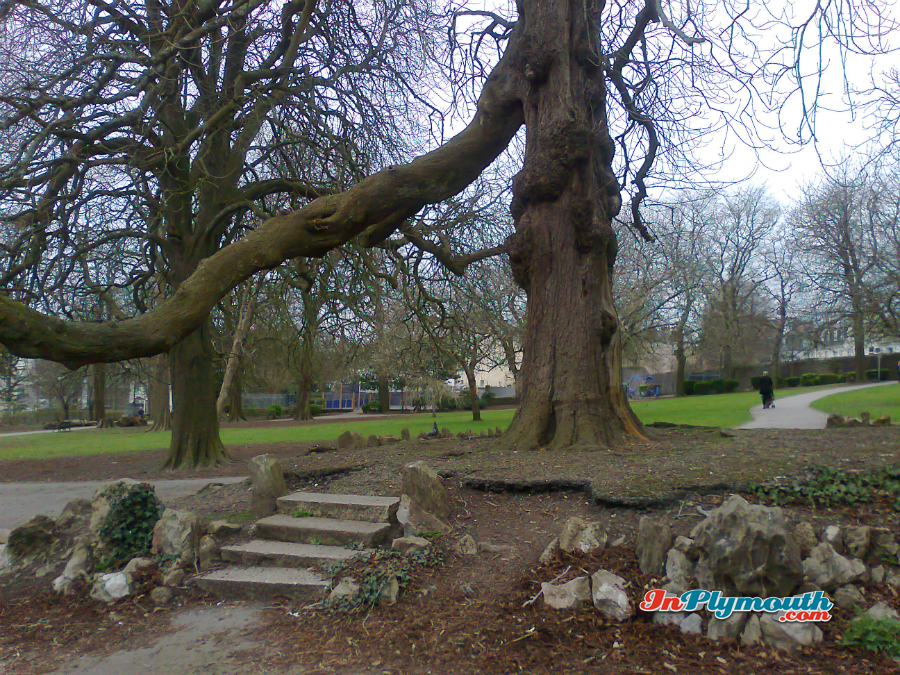 Beaumont Park March 2015