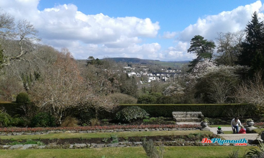 Cotehele March 2015