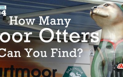 How Many Moor Otters Can You Find?
